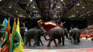 Iconic US circus to shut down after 146 years
