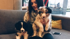Pups were on hand to take the Blue Monday stress away