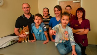 Kitty the cat with owner Paul Grice, his son Charlie, wife Michelle, vet Ann Mee who saved Kitty's life, with her colleagues vet nurses Yvonne Stone and Tammy Harrison and  Amelia Grice (front) holding the toy.