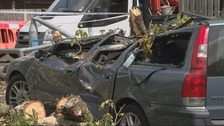Compensation for driver crushed by falling tree