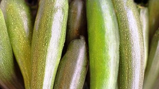 'Courgette crisis' sweeps UK as supermarket shelves empty