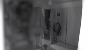 Hidden cameras catch Bristol man torturing cat