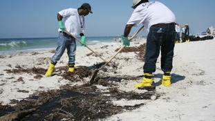 BP-contracted clean up workers remove oil from the Deepwater Horizon oil rig spill from parts of Gulf Shores beach