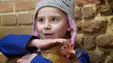 Laila Henry, who's just six, has had her hens eggs stolen