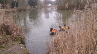 Divers at Eastfield Park Lake, Northampton