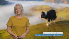 Wales Weather: Cold, frosty and foggy!