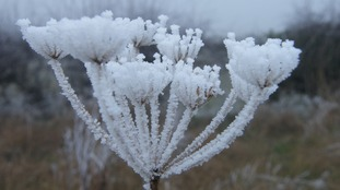 Coldest January for four years in the Anglia region