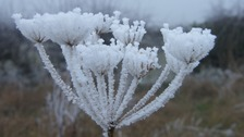 Frost bites during January 2017 in Clacton-on-Sea in Essex.