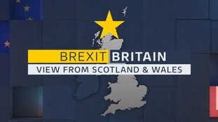 Brexit ruling: What does it mean for Scotland and Wales?