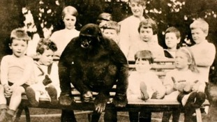 Gorilla raised in West Country village
