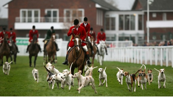Parade of the Cotswold Hounds