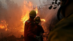 Chile asks for intentional aid as wildfires continue to rage