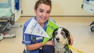 Staff with dog