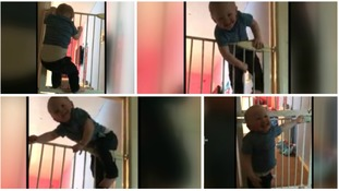 Amazingly agile baby scales stair gate twice his size