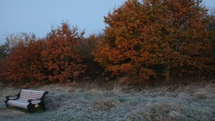 Frosty Walsall Country Park
