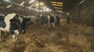 Thousands of farms across North Yorkshire will be offered a free security check-up