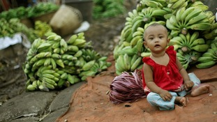 A toddler sits in front of piles of bananas at a shop in a market