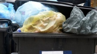 Three weekly bin collection for East Devon residents