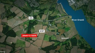 The thieves raided the Clarkes of Walsham outlet at Jimmy's Farm.