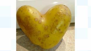 Simon's Blog - Valentine's Day