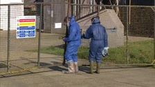 Culling continues as farmers are urged to be vigilant after bird flu outbreak