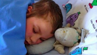 Family desperate for autistic son to get 'Horsey' back