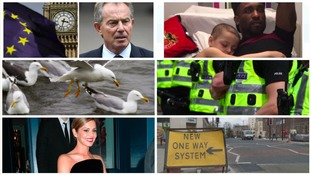 #ICYMI: Some of the stories we've covered this week