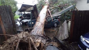 A tree was toppled onto a carport in the storm in Goleta.