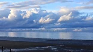 Mersey Estuary TONY MARSH