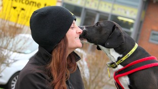 Dog abandoned on Valentine's Day in Leeds looking for loving family