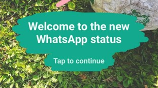WhatsApp introduces status feature - find out how to use it