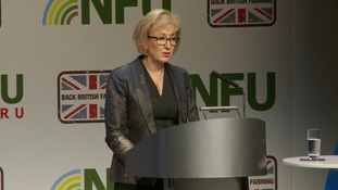 Environment Minister Andrea Leadsom was lobbied at the NFU annual conference.