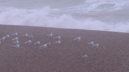 Storm Doris: live updates as 60mph winds hit the South