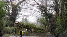 Thousands without power as Storm Doris hits NI