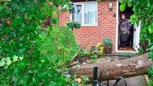 Grandmother trapped in home by tree uprooted by Storm Doris