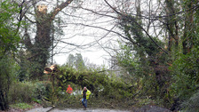 Power restored to over 20,000 customers cut off by Storm Doris