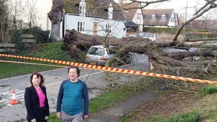 No-one was hurt when a tree fell and crushed at car at Witcham near Ely in Cambridgeshire.