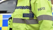 Van driver dies in collision with lorry