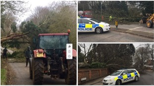 Northamptonshire Police are thanking the public for their help