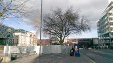 City's oldest tree will now be axed to make way for terror defence