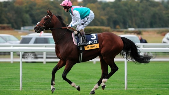Frankel ridden by Tom Queally