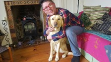 Blind man 'refused chance of a job' because of his guide dog