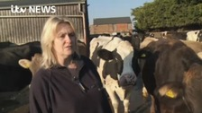 Uncertain future for region's dairy farmers