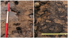 Ancient human footprints