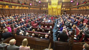 Lords approve Brexit Bill amendment in blow to Government