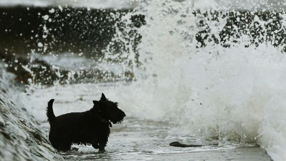 Parts of the UK have faced another day of strong winds and heavy rain