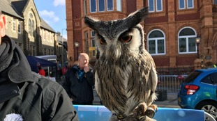 Even Hedwig the owl made a special appearance...