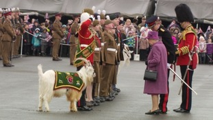 Her Majesty meets The Royal Welsh Regiment