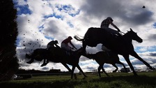 The bets covered seven horses running at Lingfield, Donacaster and Newbury
