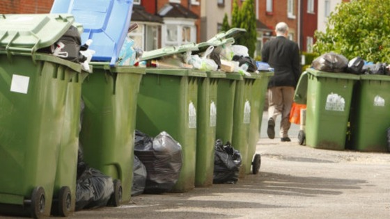 Council gets 29m for bin collections